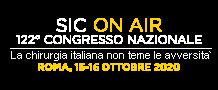 Logo SIC ON AIR